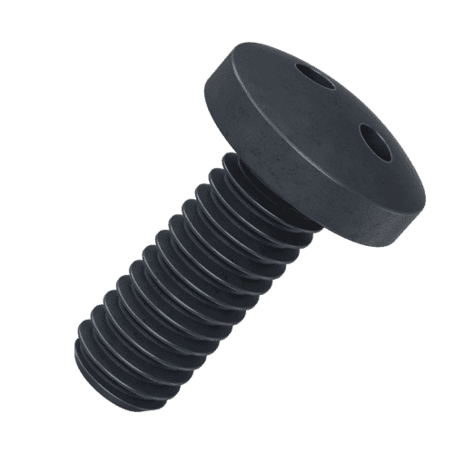 M6 x 25mm Security 2Hole / Snake Eye Pan Head Screws - Black Stainless Steel (A2)