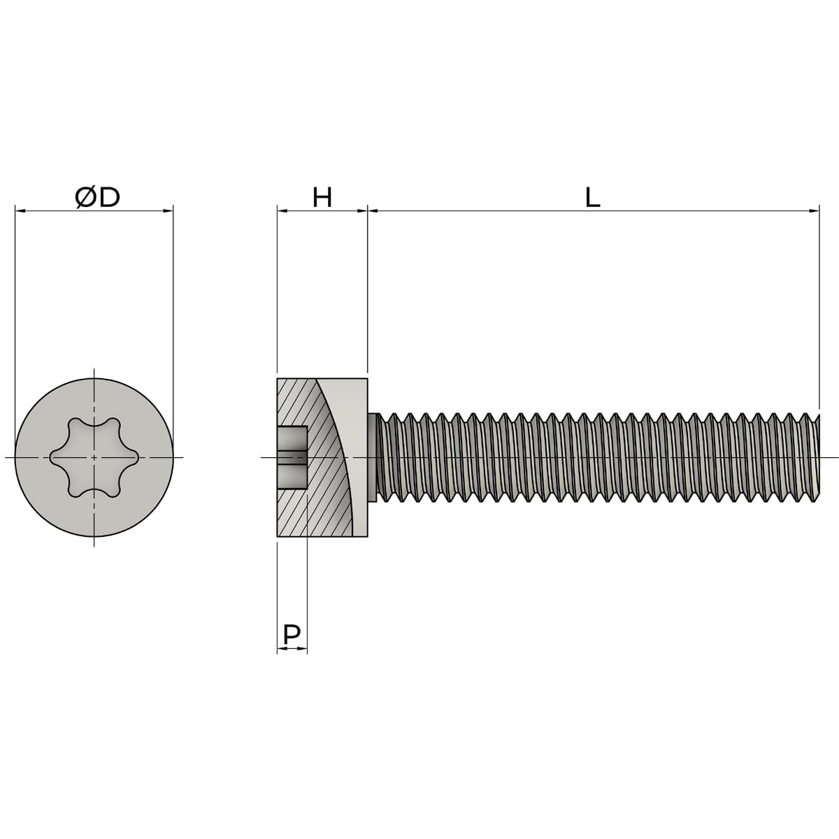 M6 x 60mm Full Thread Torx Cap Head Screws (ISO 14579) - Thread Locking Marine Stainless Steel (A4) Drawing