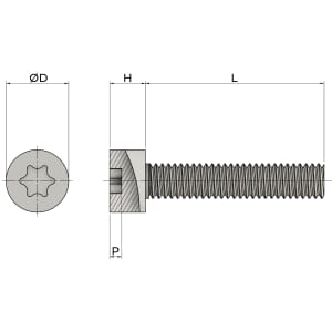 M6 x 55mm Torx Cap Head Screws (ISO 14579) - Stainless Steel (A2)