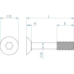 M6 x 30mm Torx Countersunk Captive Screws (DIN 965) - Thread Locking Stainless Steel (A2)