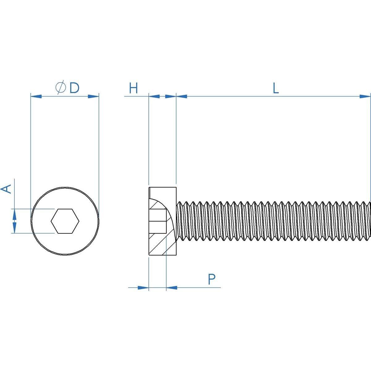 M8 x 20mm Low Head Pilot Recess Cap Screws (DIN 6912) - Stainless Steel (A2) Drawing