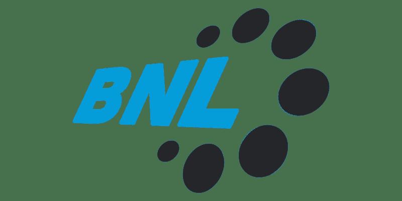 BNL Bearings